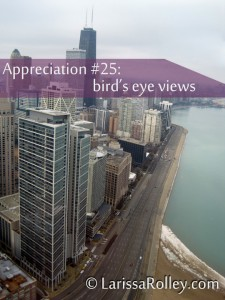 Appreciation #25: bird's eye views