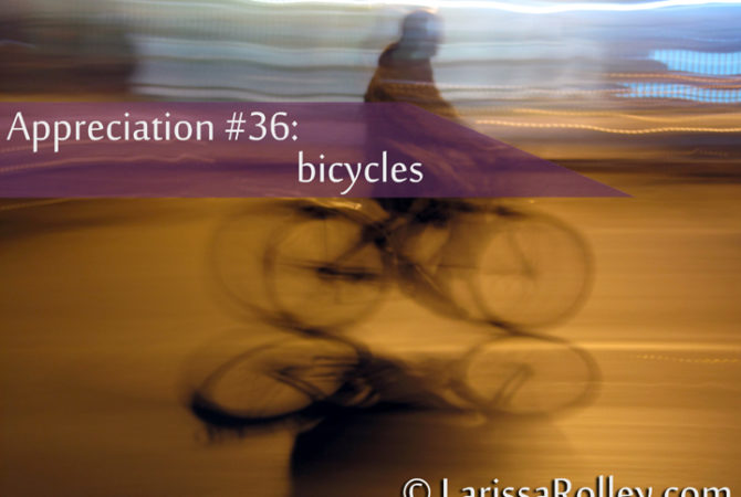 Appreciation #36: bicycles