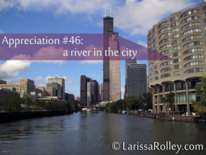 Appreciation #46: a river in the city