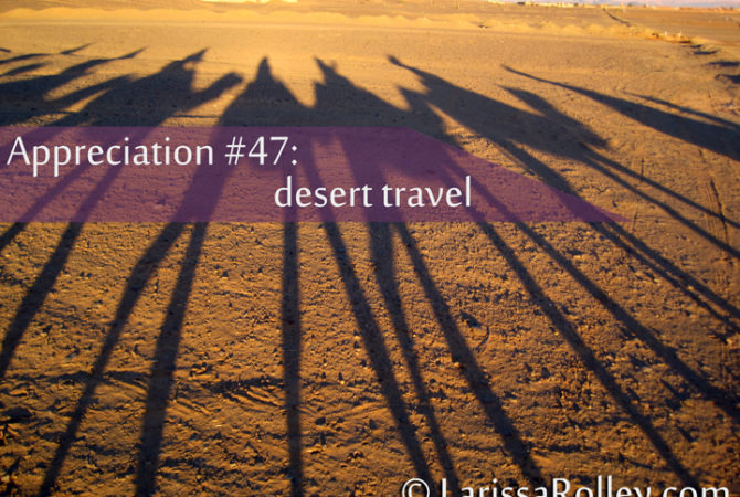 Appreciation #47: desert travel