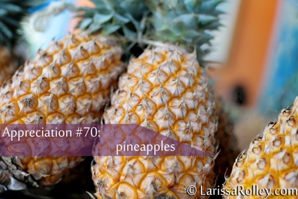 Appreciation #70: pineapples