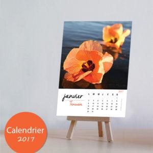 2017 Calendrier Purau