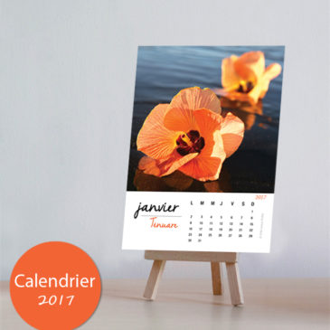 2017 Calendar Hibiscus Purau – Fare Ma'ohi sur Polynésie 1ère