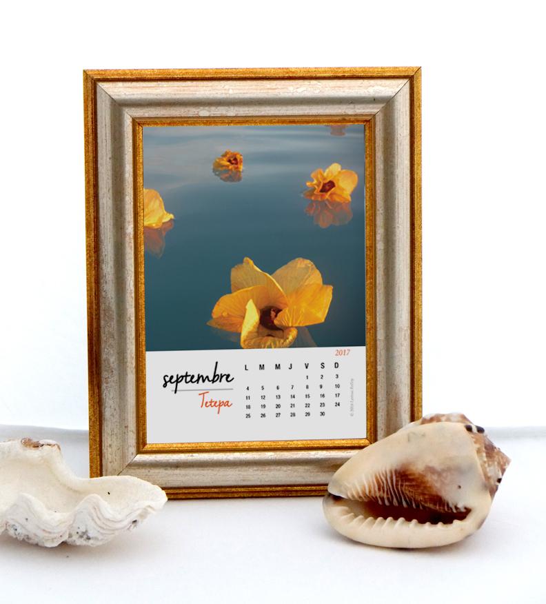 Calendar2017 Frame French Larissa Rolley