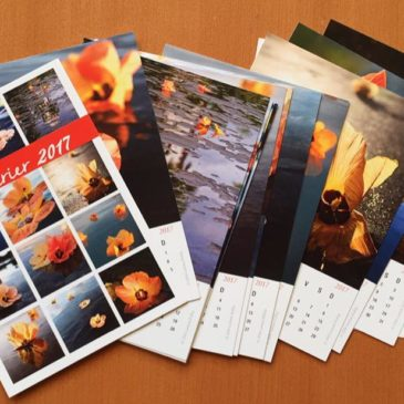 2017 Hibiscus Desktop Calendar
