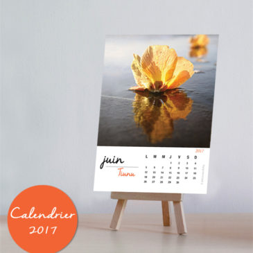 June – Strength in Lightness – hibiscus calendar